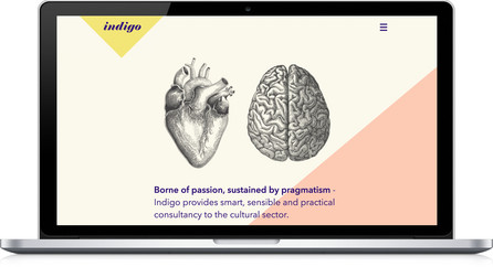 Indigo Website Homepage – shows logo and balck and white anatomical line drawings of a heart and a brain